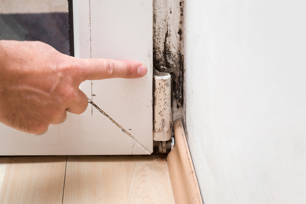 Someone pointing to mold in the corner of a room.