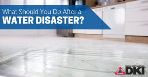 What Should You Do After a Water Disaster