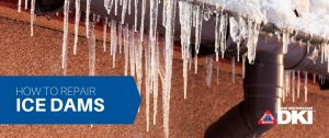 ice dams blog header