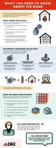 Infographic about ice dams