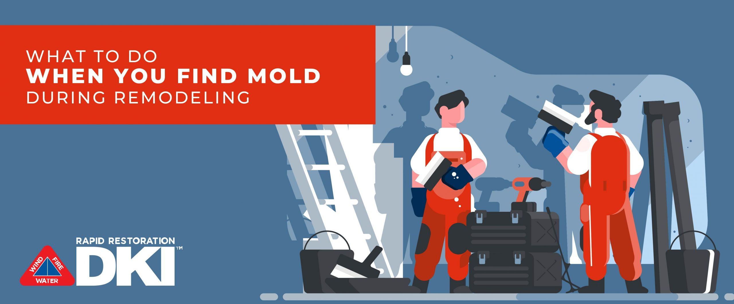remodeling and mold