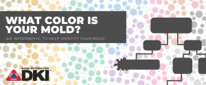 what color is you mold graphic