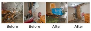 rapid restoration before and after pictures