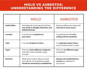 mold vs asbestos chart